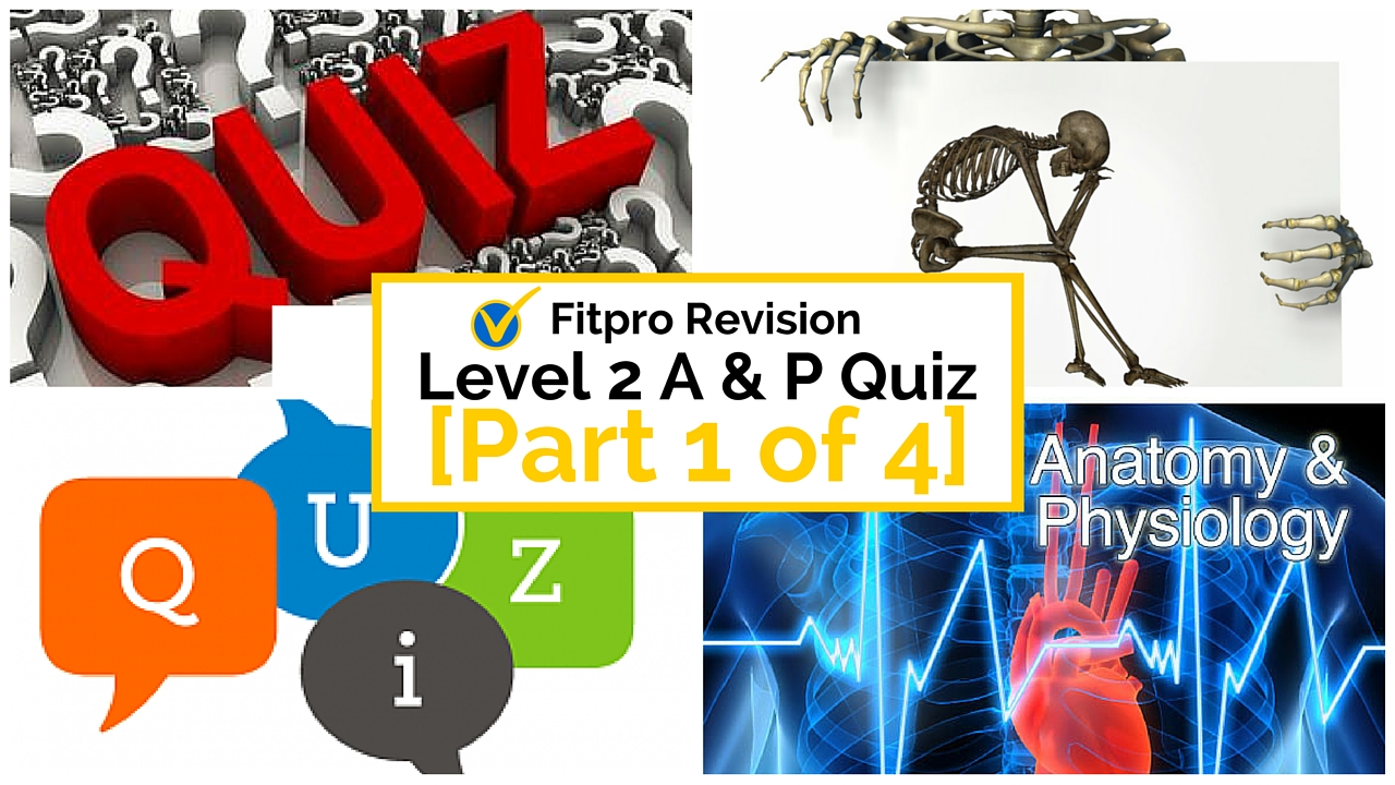 Level 2 Anatomy and Physiology Mock Paper: Part 1 of 4
