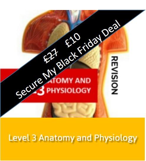 l3a+p black Friday fitness course deals