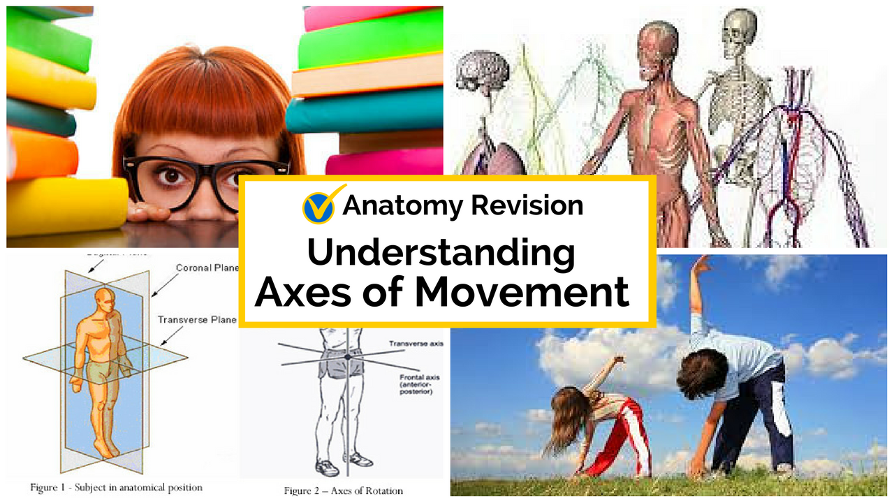 What is axes movement