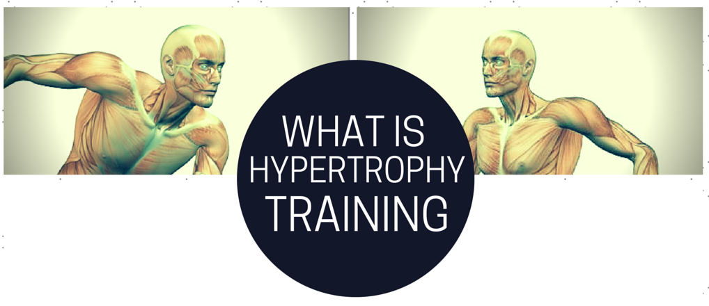 What is Hypertrophy Training?