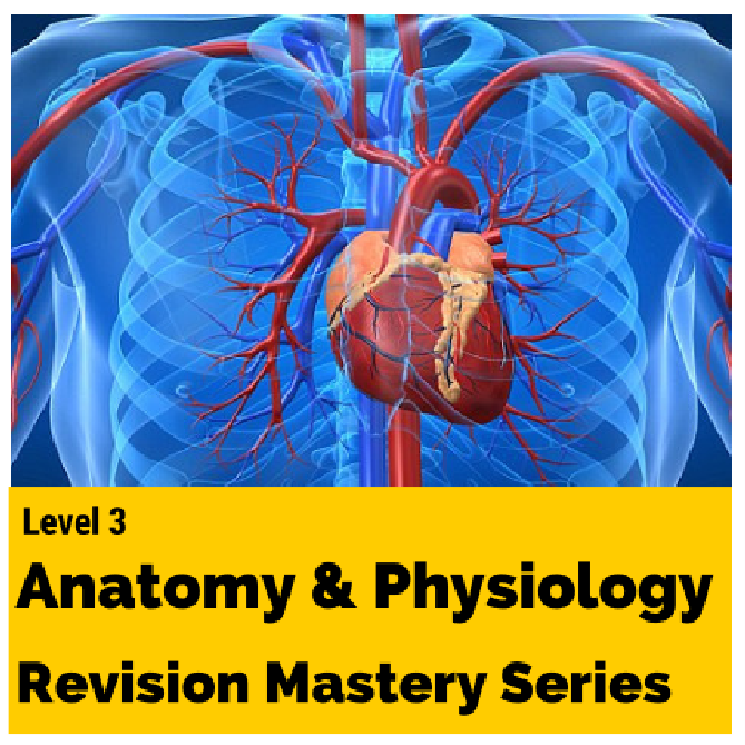 level 3 anatomy and physiology revision mastery series