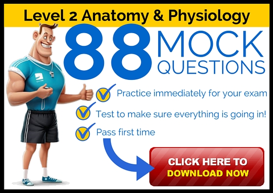 Level 2 Anatomy and Physiology mock Questions - 88