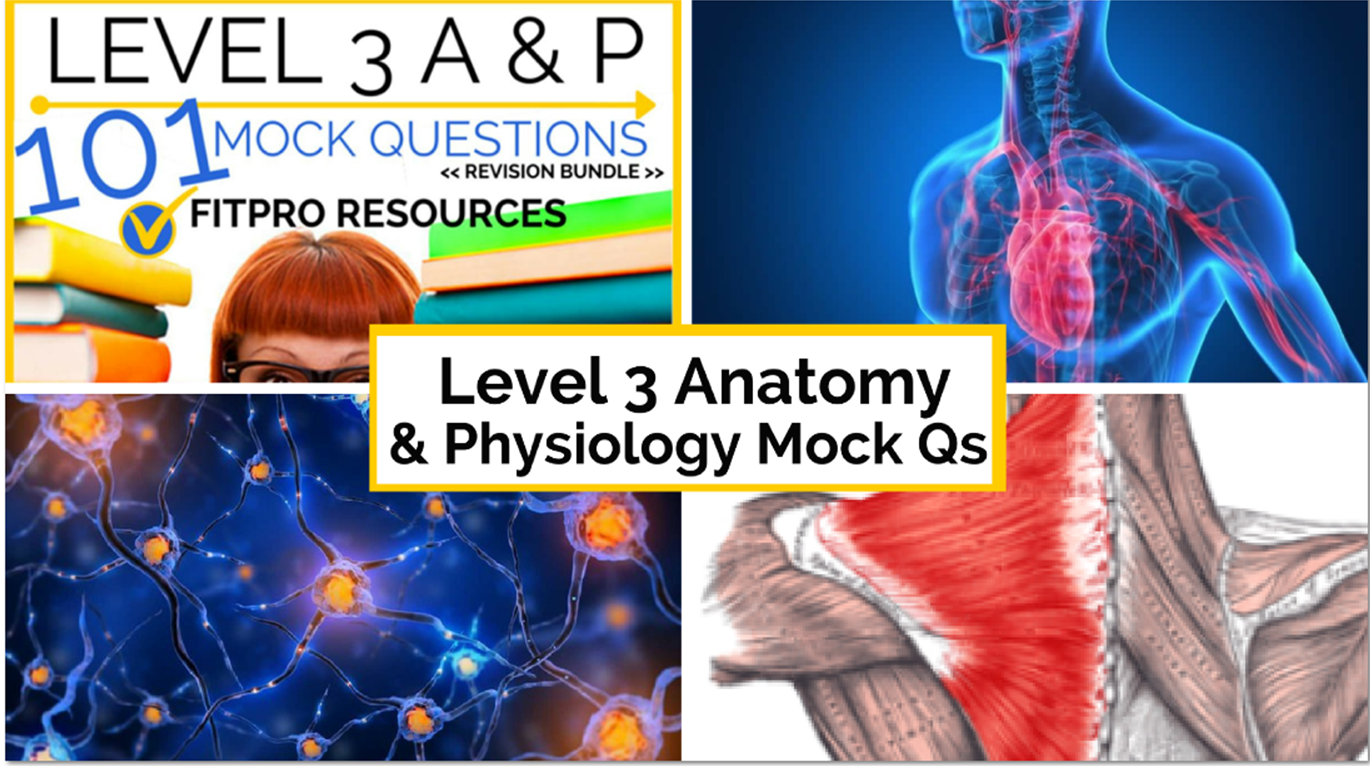 Level 3 Anatomy and Physiology Archives - Parallel Coaching UK\'s #1 ...