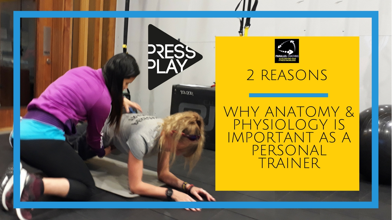 Why Anatomy and Physiology is important as a Personal Trainer