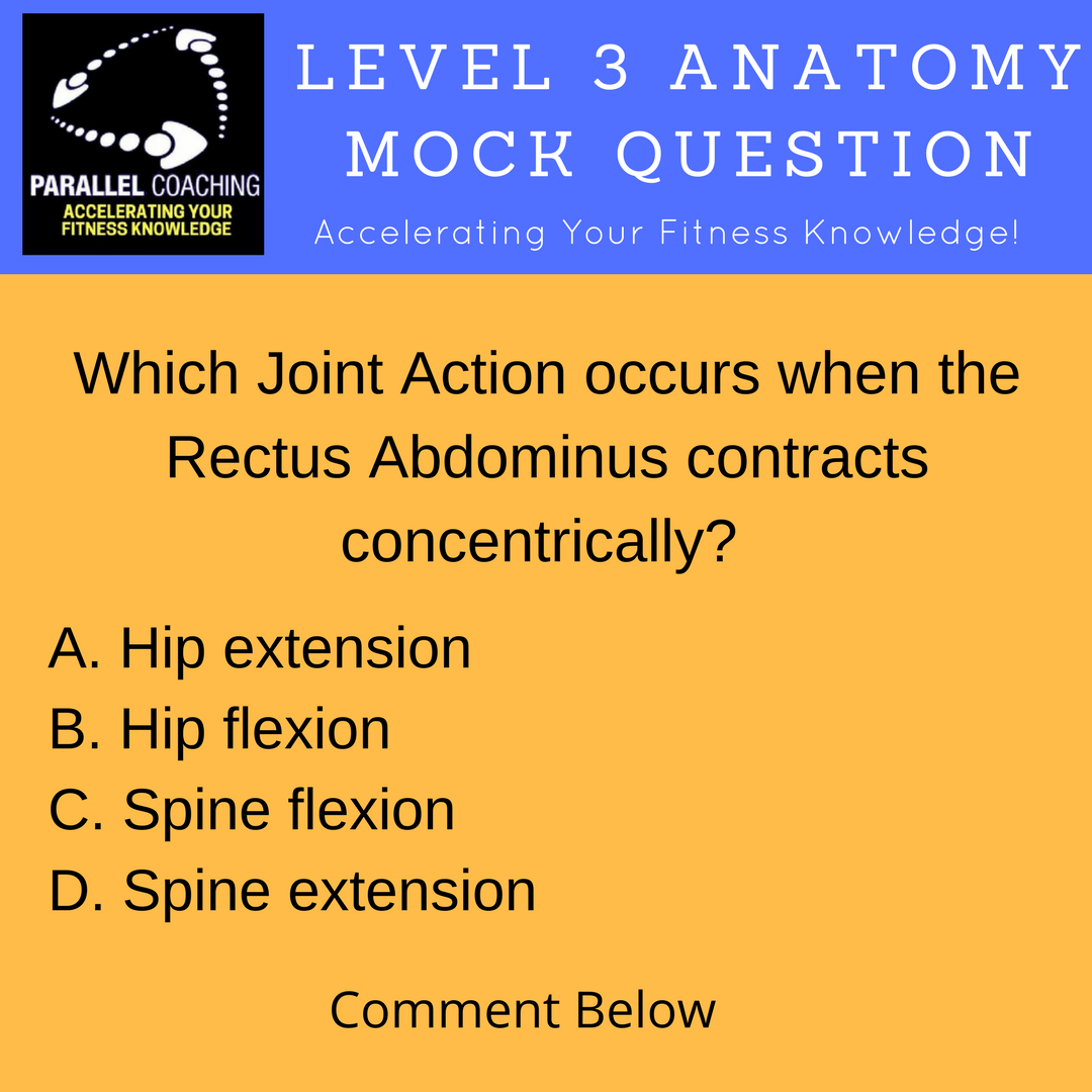 Joint Actions and Muscle Contractions Mock Questions