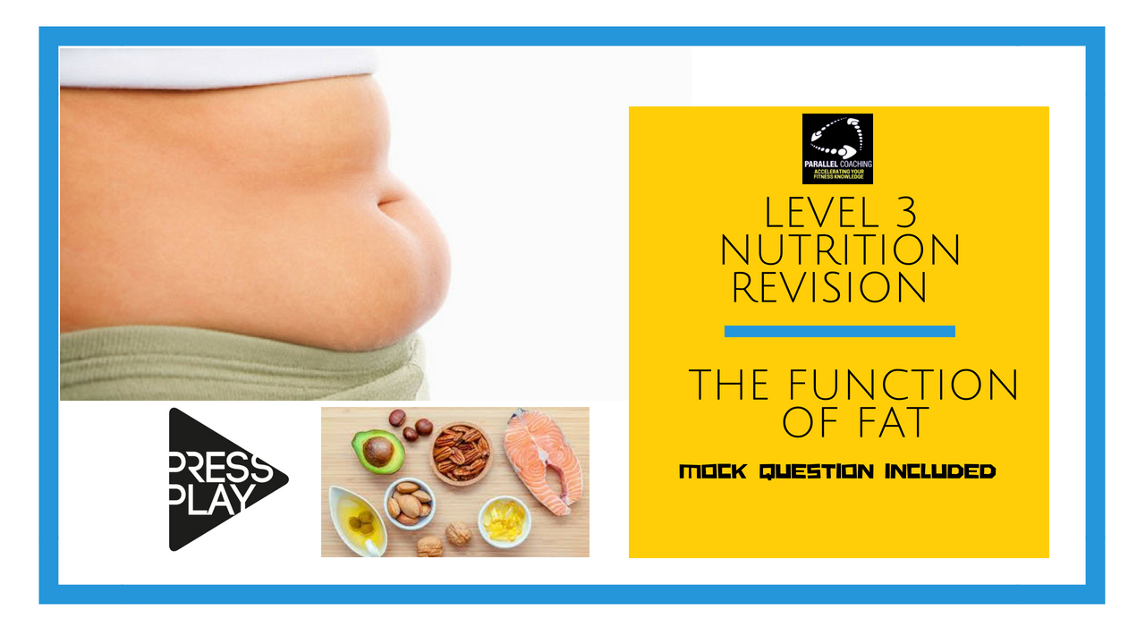 Level 3 Nutrition Revision The function of fat