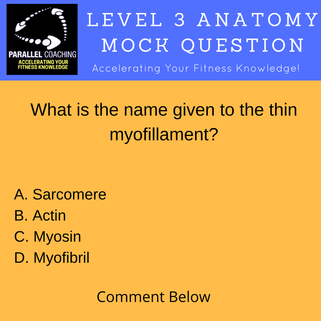 Mock Questions - Anatomy and Physiology Level 3 - understanding muscle contractions