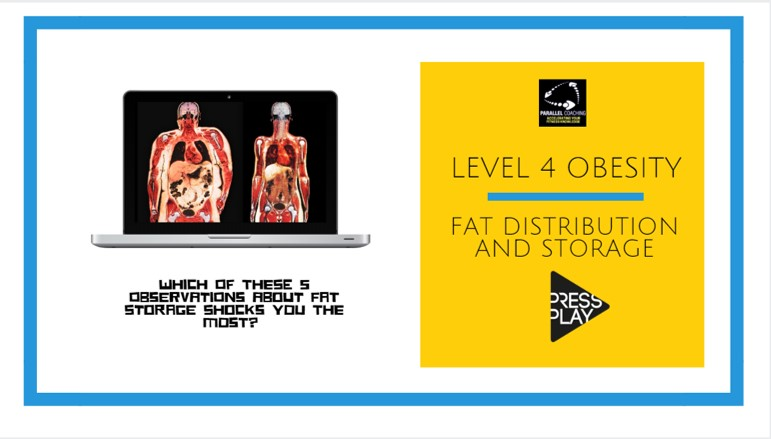 Level 4 Obesity: Fat Distribution and Storage