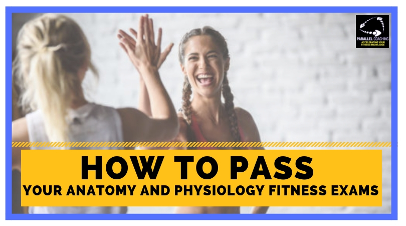 How to pass anatomy and physiology fitness exams