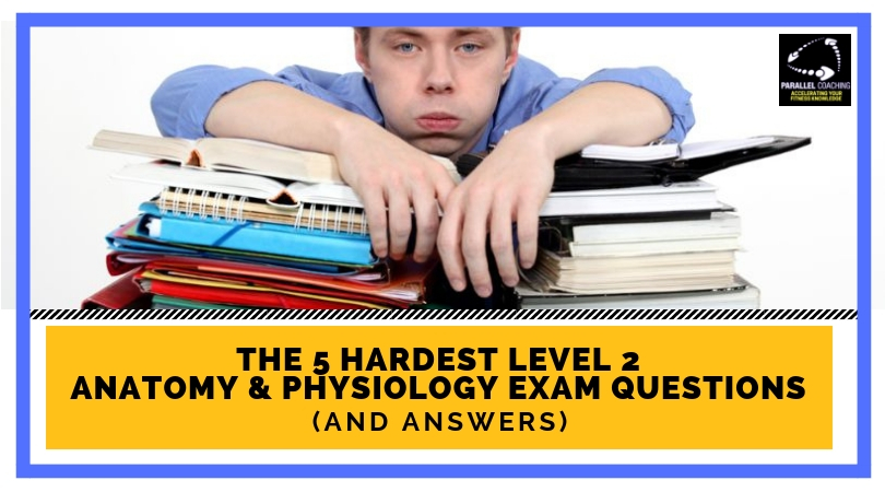 The 5 Hardest Level 2 Anatomy and Physiology Exam Questions