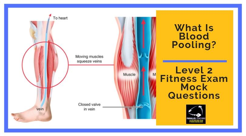What Is Blood Pooling - Level 2 Fitness Exam Mock Question