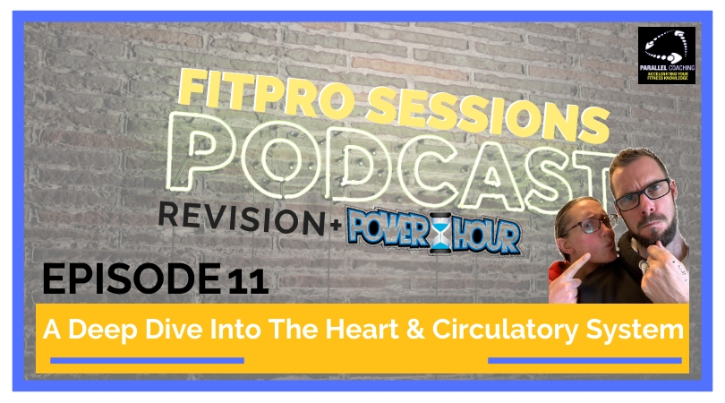 Episode 11 Revision A Deep Dive Into The Heart & Circulatory System