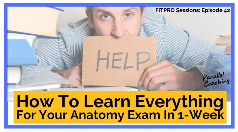 How to learn everything for your anatomy exam in one week