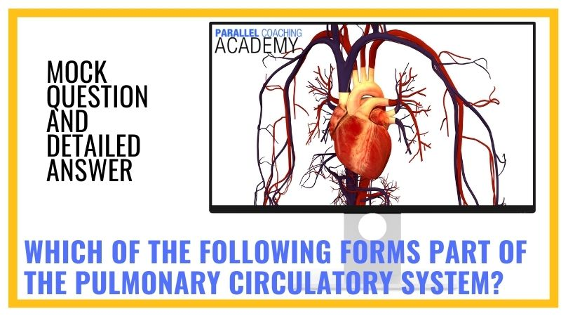 Which of the following forms part of the pulmonary circulatory system