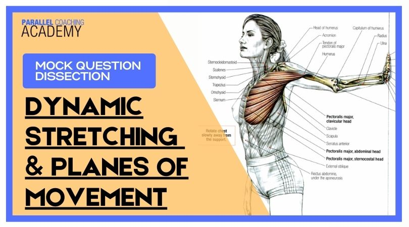 When Performing A Dynamic Stretch For The Pectoralis Major, In Which Plane Does Most Movement Occur